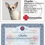 US Service Animals ESA Letter